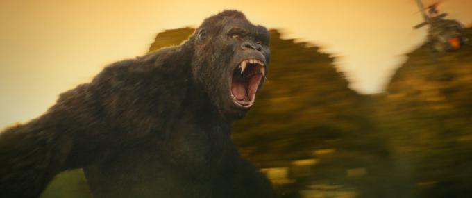 Kong: Skull Island - Courtesy of Warner Bros. Pictures