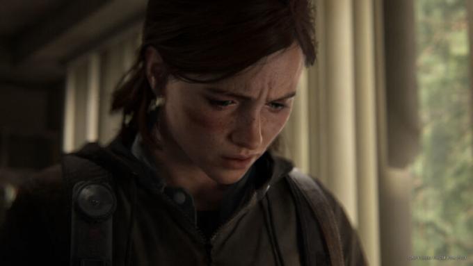 <i>The Last of Us Part II è il gioco più accessibile di tutti i tempi (Fonte Lenstore)</i>
