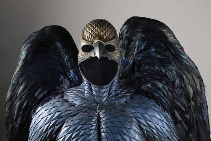 Il costume di Birdman