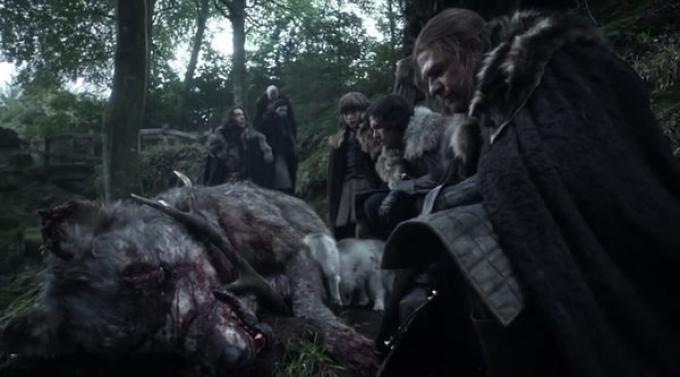 Eddard Stark e il suo seguito trovano la meta-lupa morta nel primo episodio del Trono di spade