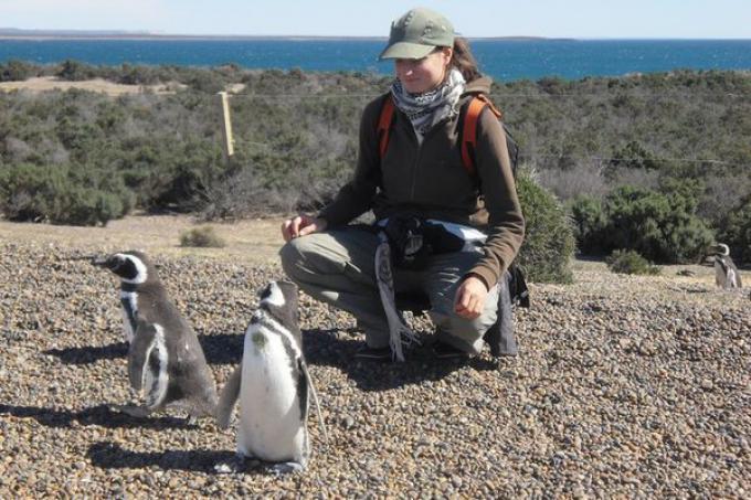 Silvia Robutti alle prese con i pinguini