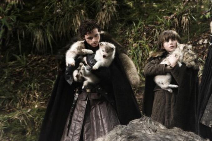 Robb e Bran Stark con i cuccioli di metalupo