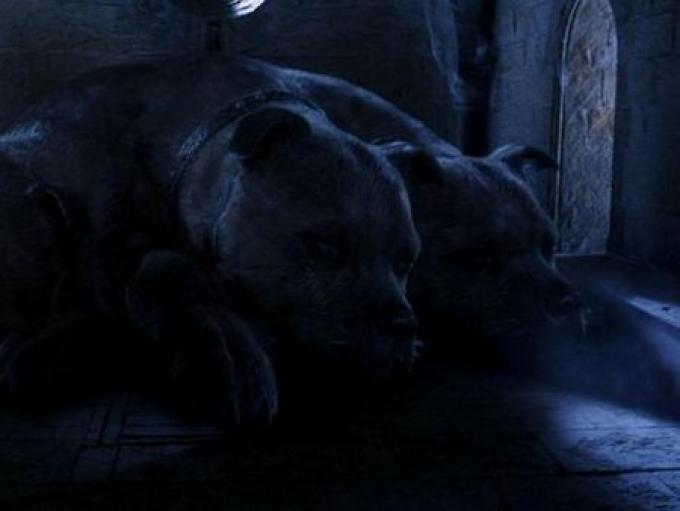 Dopo aver eluso la sorveglianza di Fuffy, il terribile cane a tre teste,...