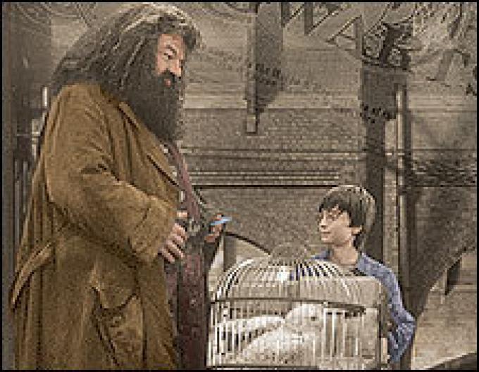 Solo con l'intervento del minaccioso Hagrid, Harry ha il permesso di frequentare l'esclusiva scuola di magia di Hogwarts