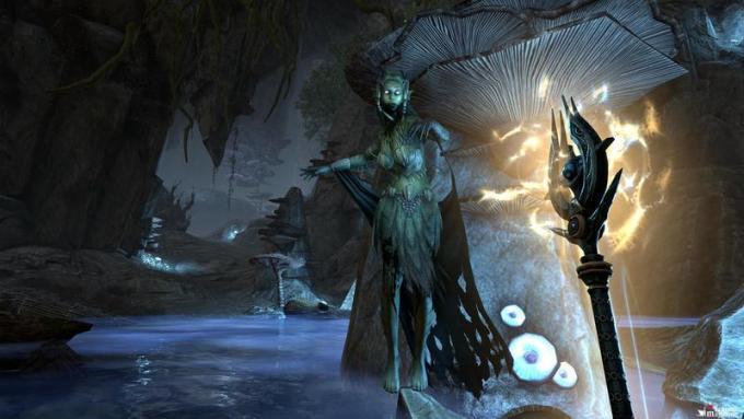 Elder Scroll Online: Summerset