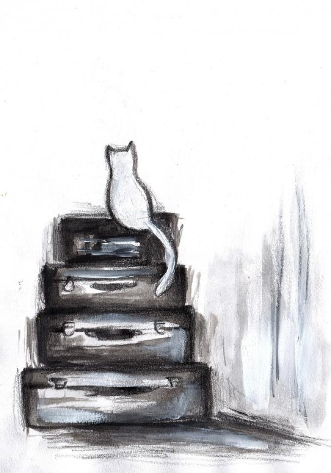Illustrazione di Diana Daniela Gallese