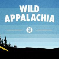 Fallout 76: disponibile l'aggiornamento Wild Appalachia