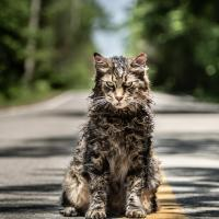 Pet Sematary, al cinema