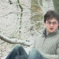 Harry Potter e i Doni della Morte: le dichiarazioni di David Yates