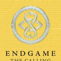 Endgame - The Calling