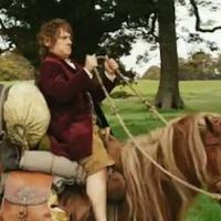 Lo Hobbit Vs P.E.T.A.: l'annosa questione cinema-animali