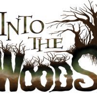 Into the Woods, al via le riprese