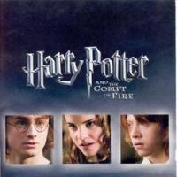 La maratona di Harry Potter